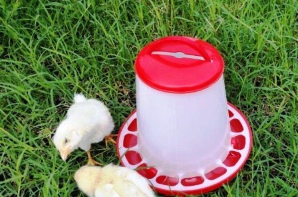 Товары для животноводства: Поилки для животных в Сельский магазин