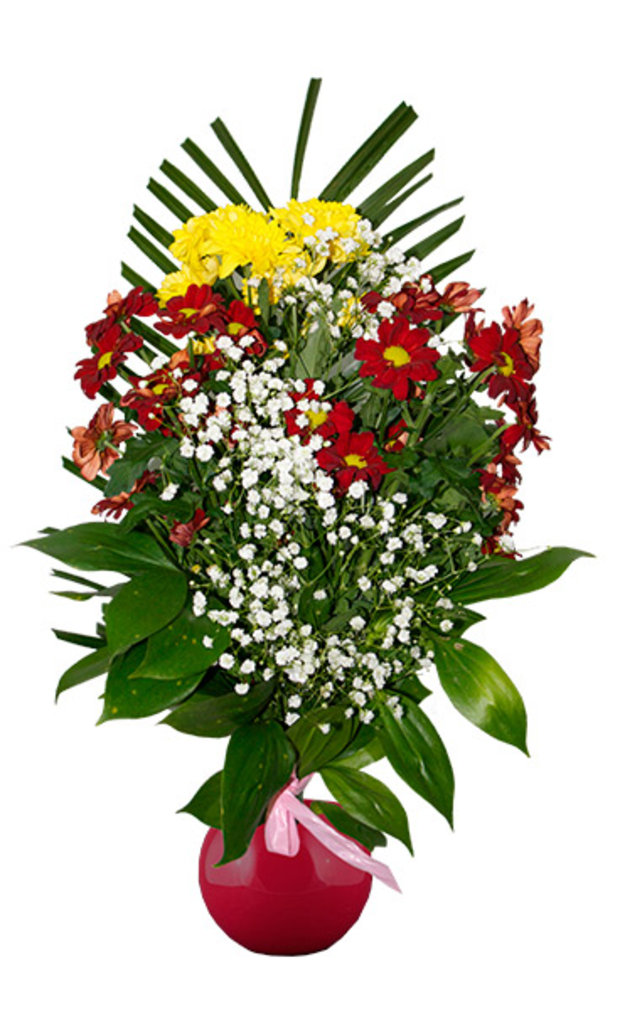 """Букеты и композиции из живых цветов: Букет """"3 хризантемы"""" в Цветы доставка"""