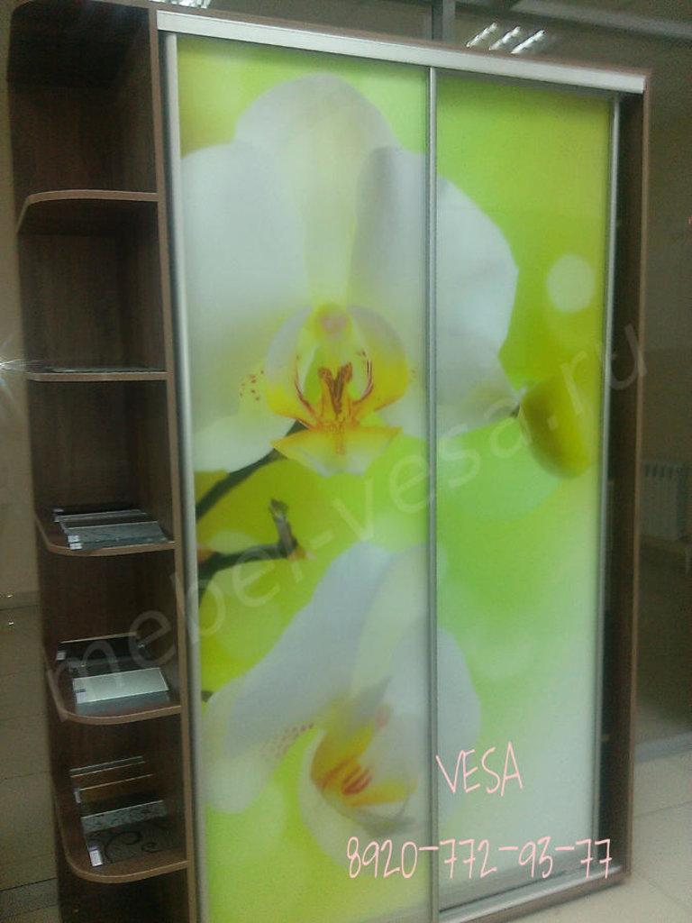 Шкафы: Шкаф-купе Лайм в Vesa