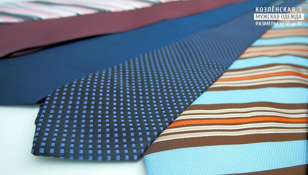 Аксессуары: Мужской галстук в Богатырь, мужская одежда больших размеров
