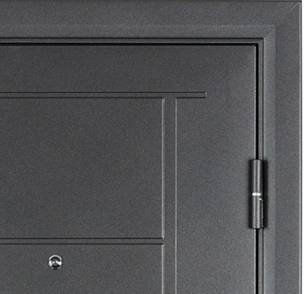 Входные двери: Входная дверь СТАИЛ в STEKLOMASTER