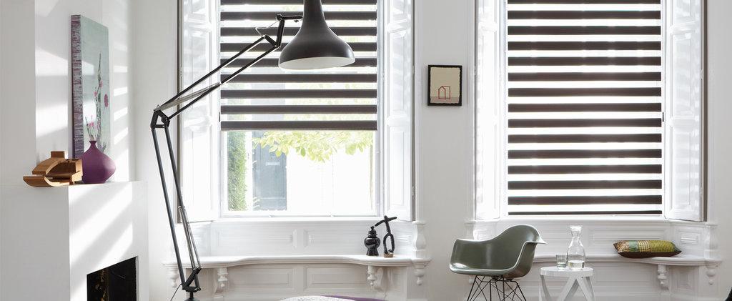 Рулонные шторы ЗЕБРА: Рулонные шторы MINI-ЗЕБРА (BESTA) для пластиковых окон с любой глубиной штапика в Салон штор, Виссон