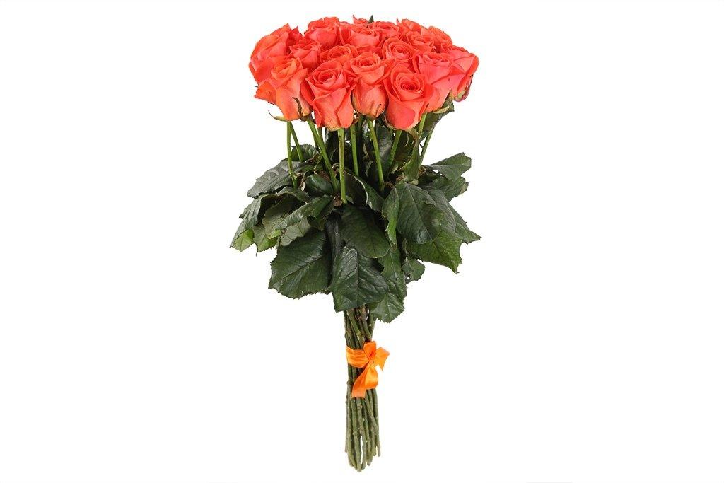 19 оранжевых роз в Доставка Радости