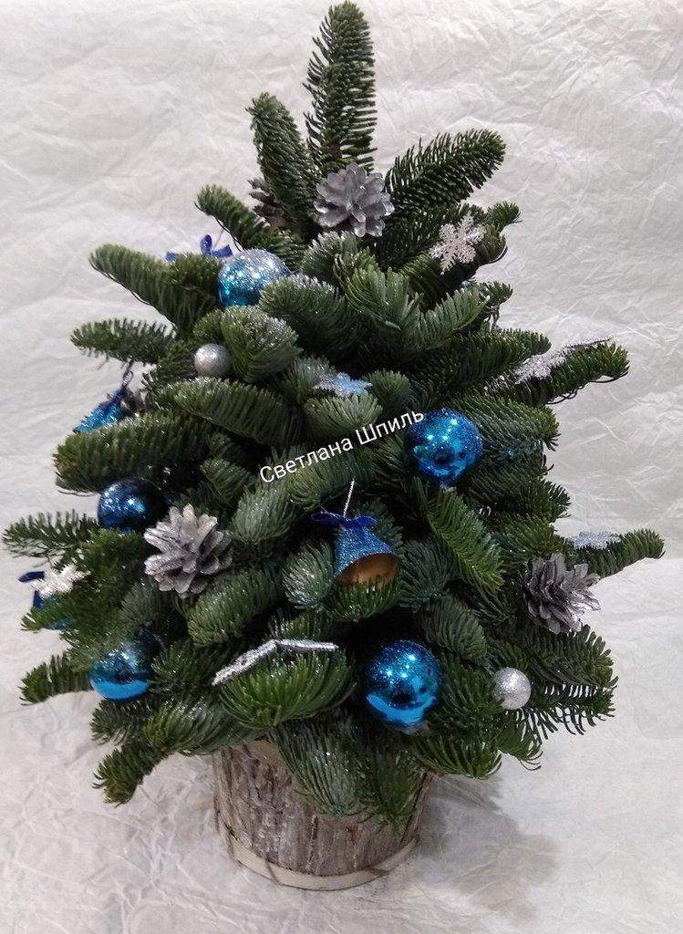 Композиции из живых цветов: Букет новогодний в Николь, магазины цветов