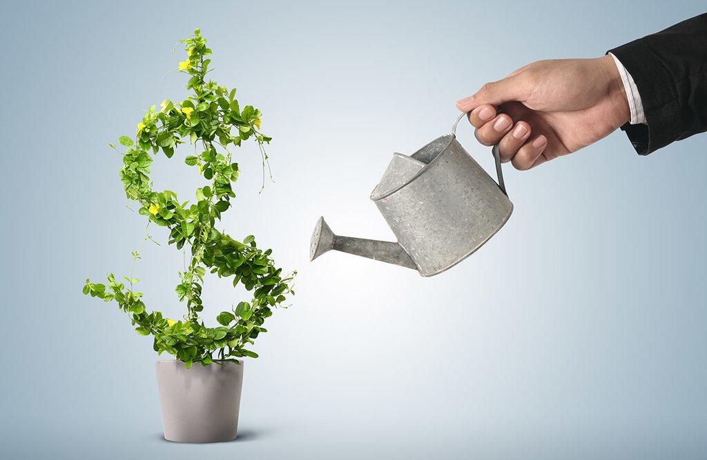 Финансовая помощь: Поддержка малого бизнеса в Фонд ресурсной поддержки малого и среднего предпринимательства, микрокредитная компания Вологодской области