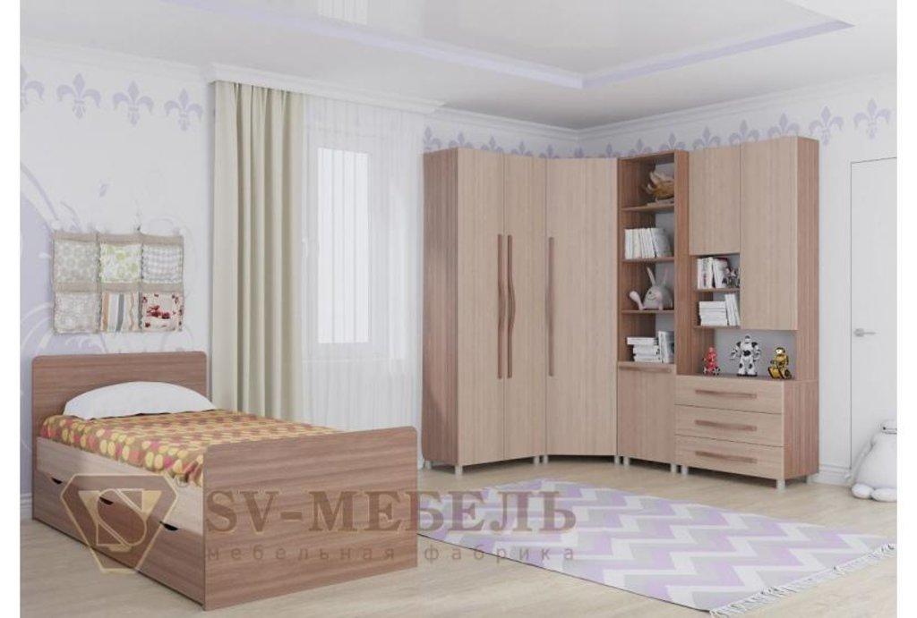 Мебель для детской Алекс-1: Шкаф угловой Алекс-1 в Диван Плюс