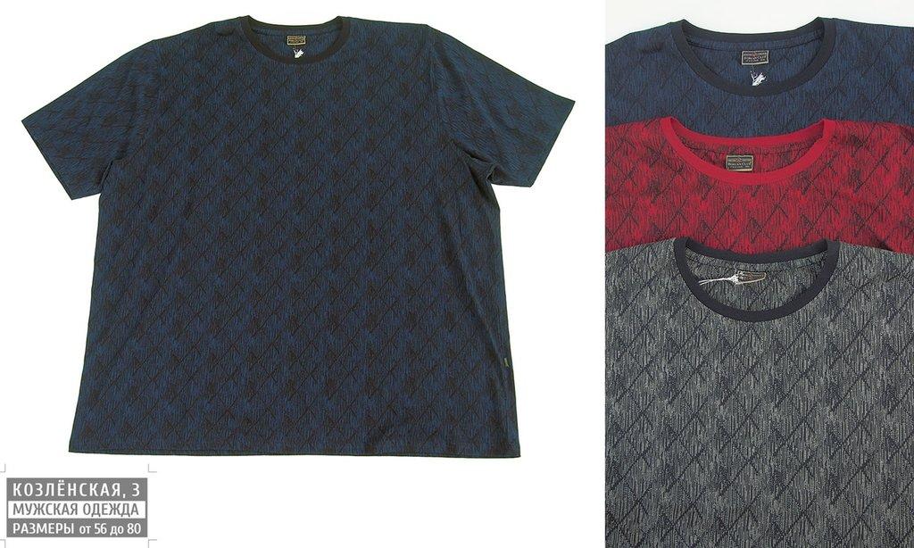 Футболки: Мужская футболка в Богатырь, мужская одежда больших размеров