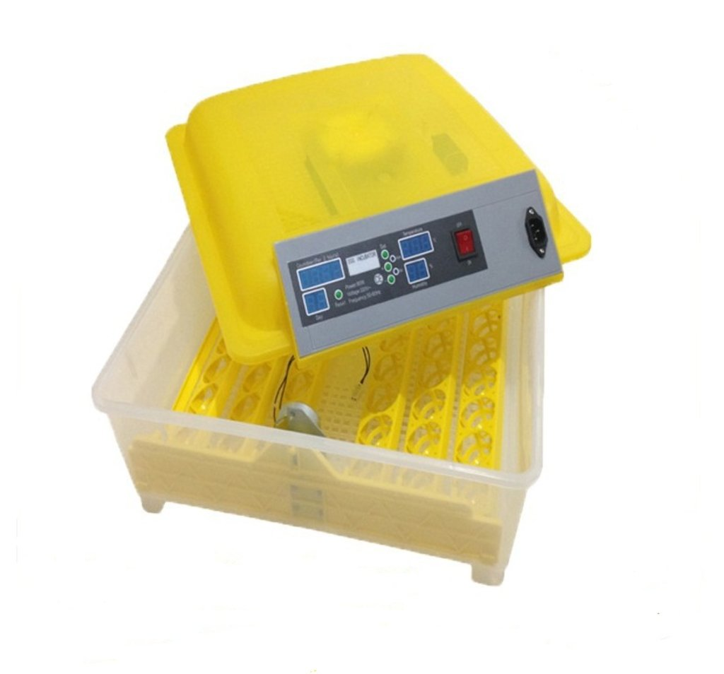 Инкубаторы бытовые, оборудование для бытовых инкубаторов: Инкубатор на 48 яиц с резервным питанием 12В в Сельский магазин