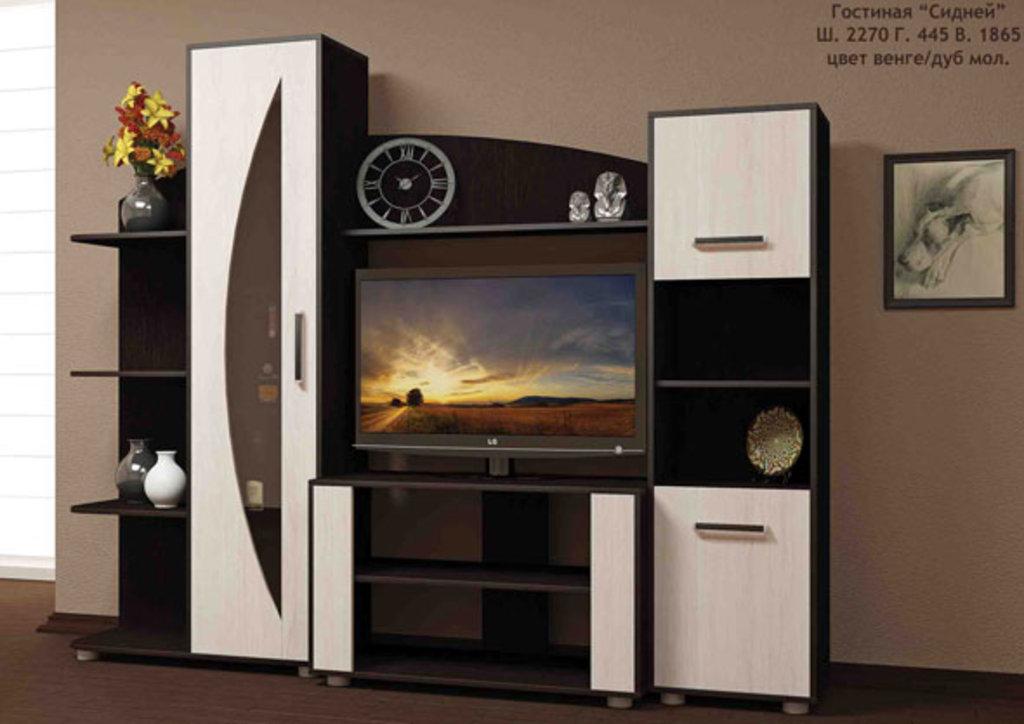 Мебель для гостиных, общее: Гостиная Сидней в Стильная мебель