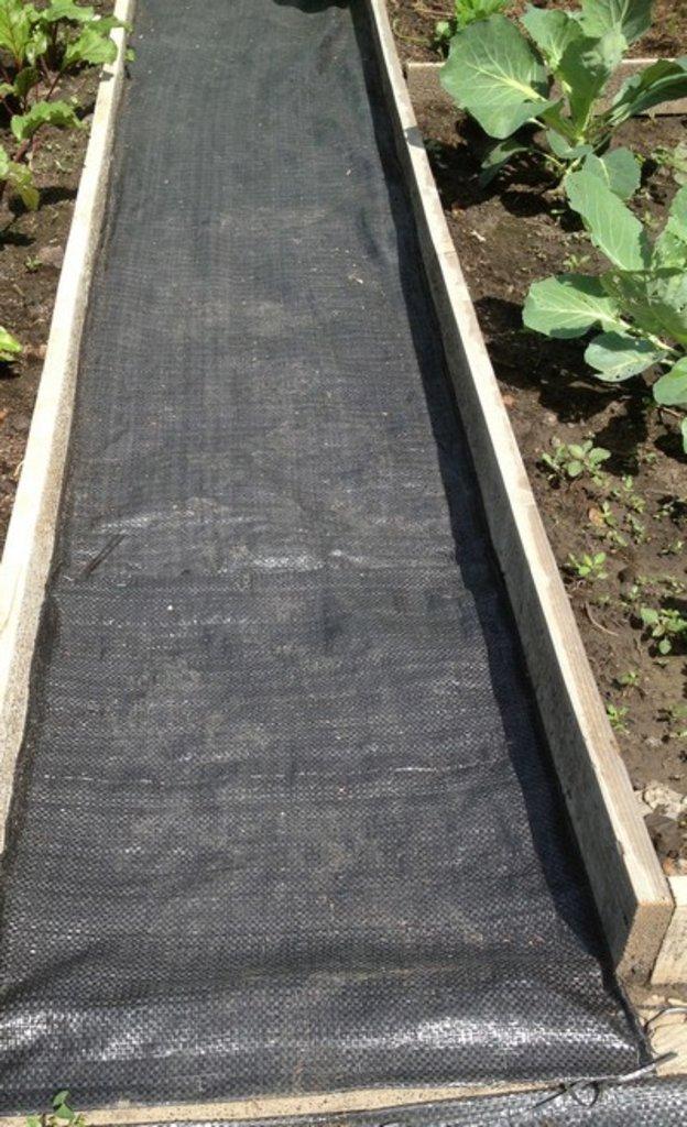 Экоспан Гео: Экоспан Гео садовый (1,6х25м), рул. в Гекса-Юг, ООО