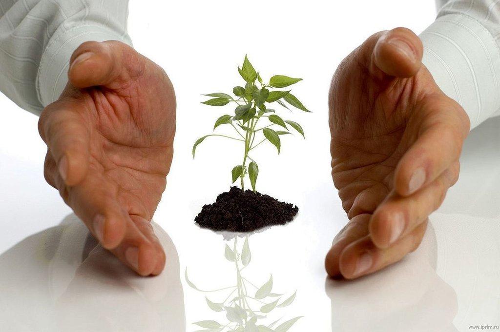Финансовая помощь: Фонд ресурсной поддержки малого предпринимательства в Фонд ресурсной поддержки малого и среднего предпринимательства, микрокредитная компания Вологодской области