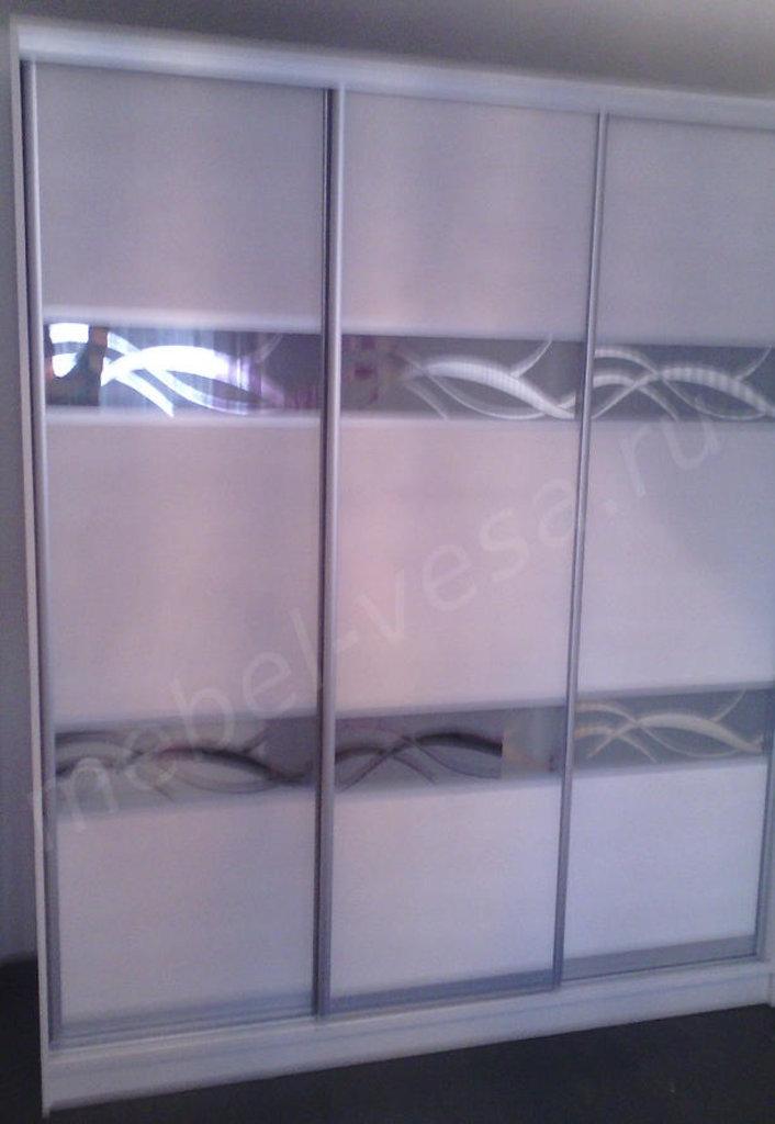 Шкафы: Шкаф-купе Франк в Vesa