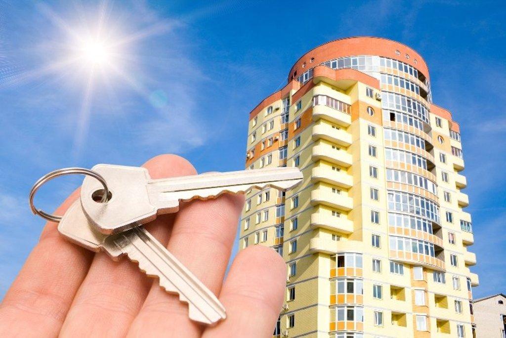 Жилищное строительство: Реализация недвижимости в Стройсектор, ООО