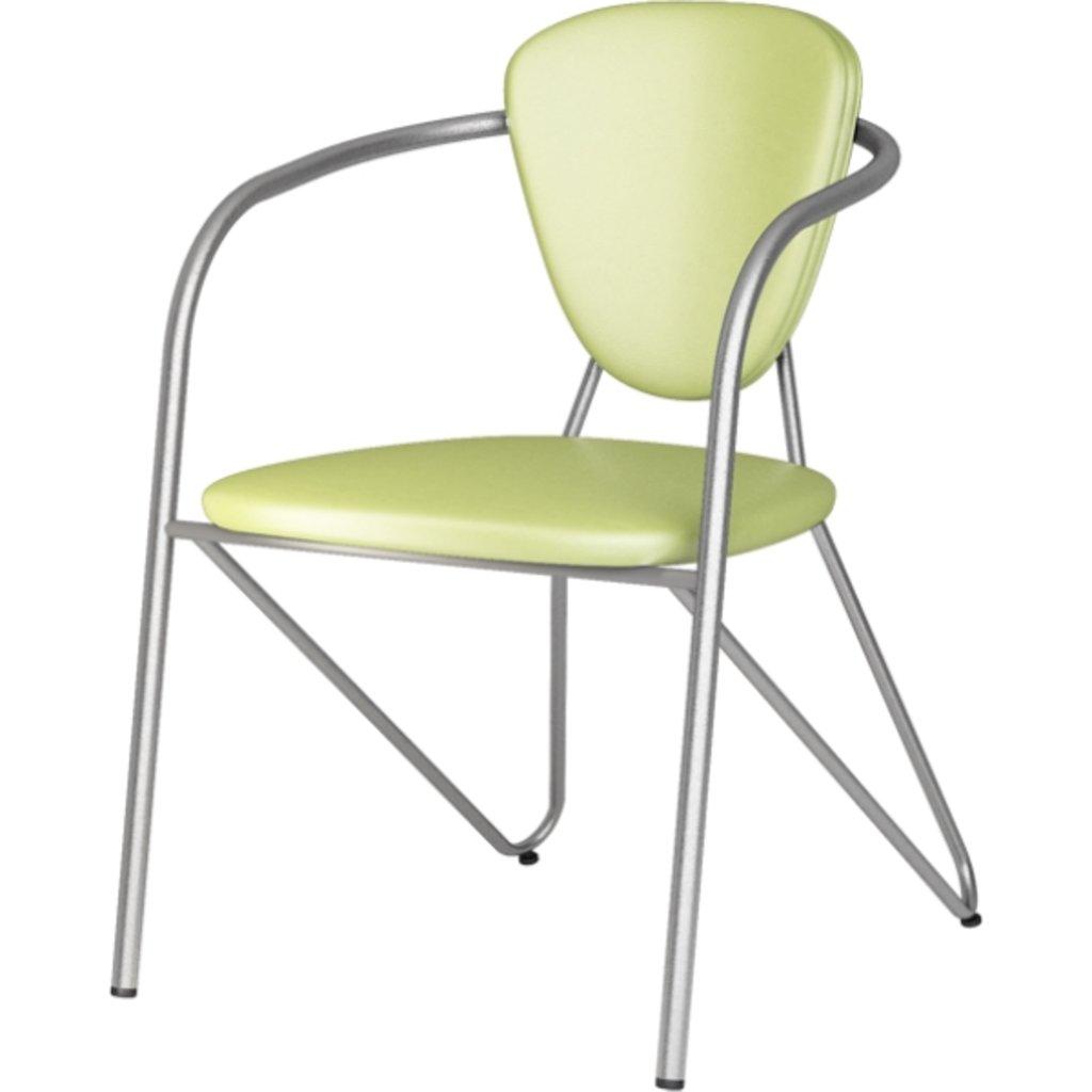 Офисные стулья: Стул Э-1 (металлик) в АРТ-МЕБЕЛЬ НН