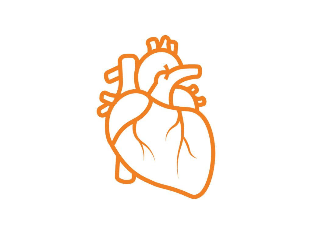 Комплексные лабораторные исследования: Комплекс «Для кардиолога» в ЛабСтори, медицинская компания