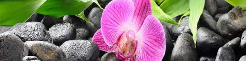 Фартуки ЛакКом 4 мм.: Орхидея №2 в Ателье мебели Формат