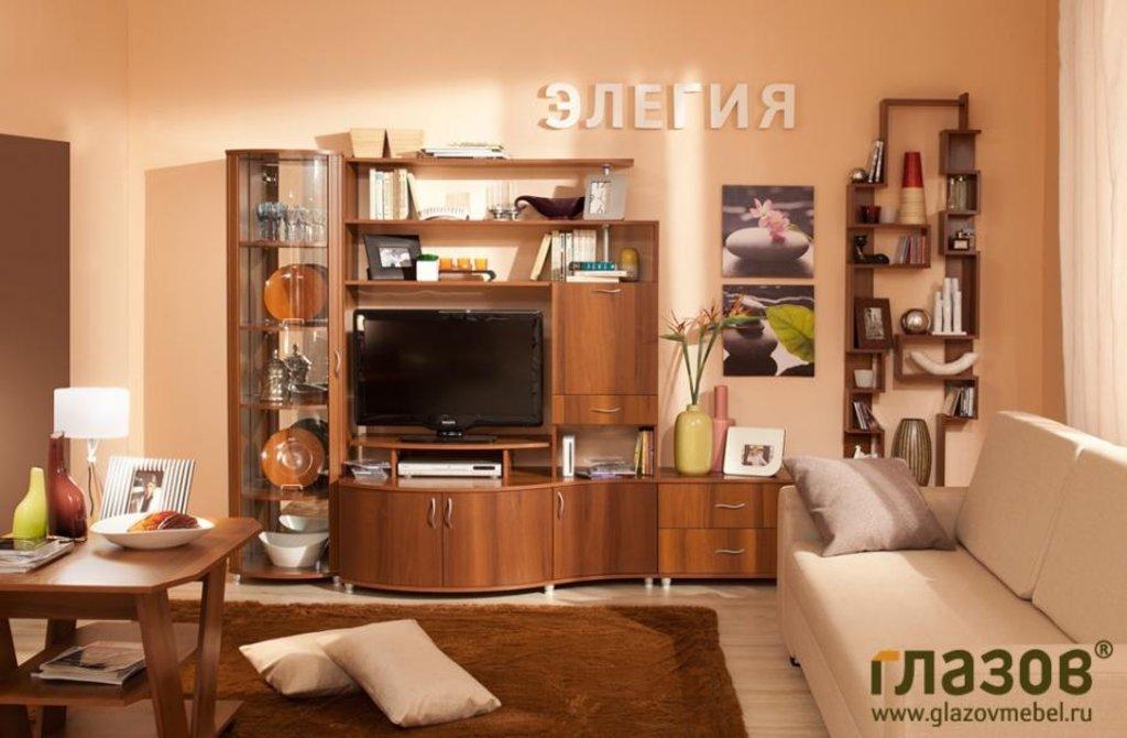 Гостиная Элегия 13: Гостиная Элегия 13 в Стильная мебель