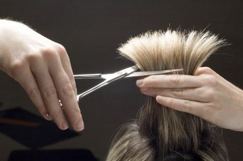 Курсы в сфере красоты и здоровья, общее: курсы парикмахеров в Импровизация