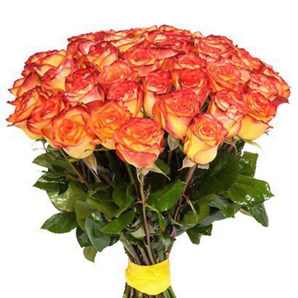 Цветы: Розы Желто-красные в Николь, магазины цветов