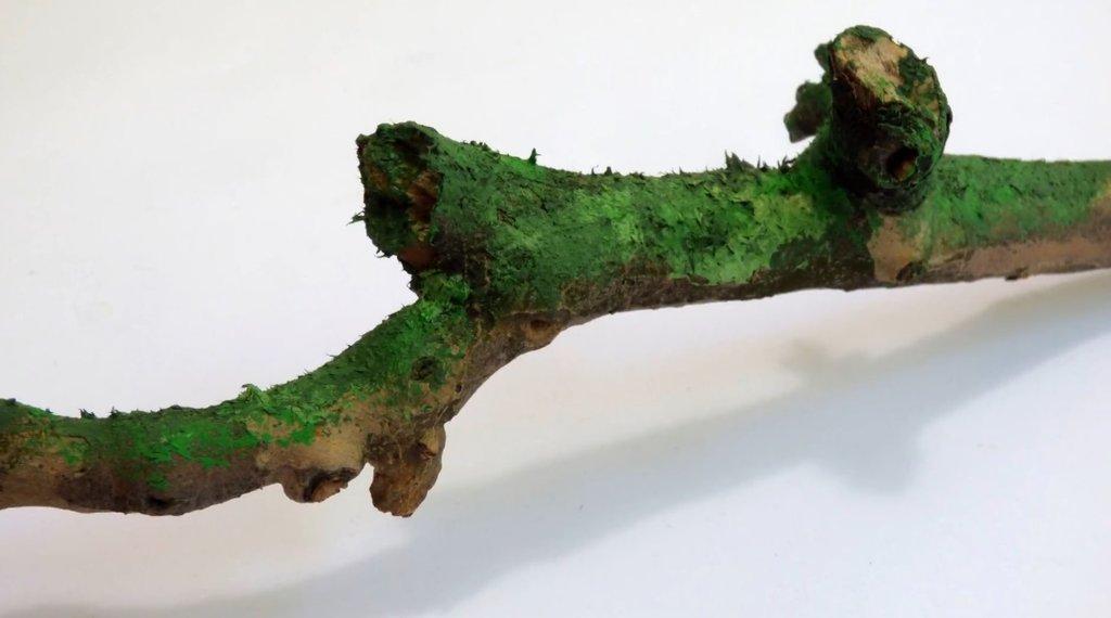 Грунты, лаки, разбавители, паста: Паста с эффектом мха, 100мл, светло- зеленый Pentart в Шедевр, художественный салон