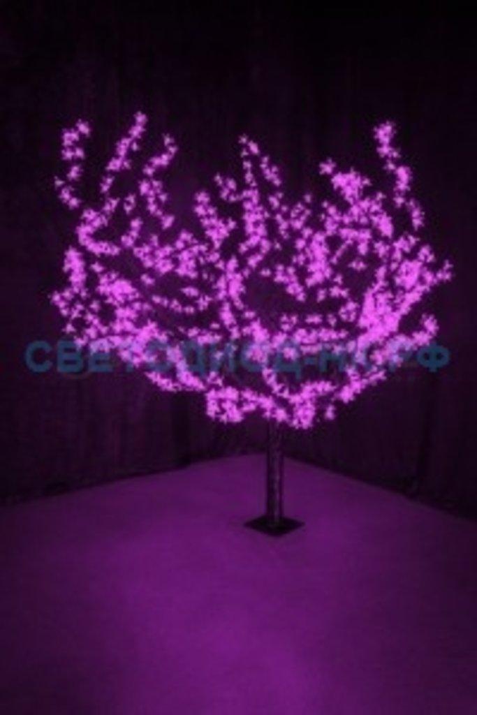"""Светодиодные деревья: Дерево """"Сакура"""" 864LED 1,5м, фиолет., d кроны 1,8м, IP44 110W 531-106 Neon-night в СВЕТОВОД"""