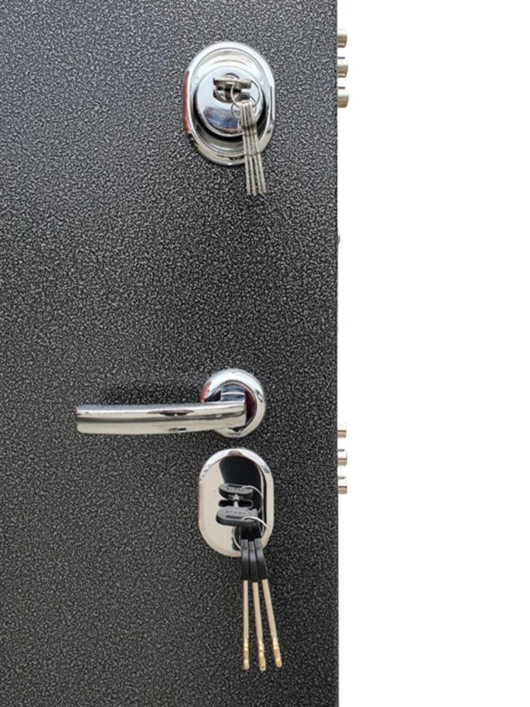 Входные двери в Тюмени: Входная дверь ДА-15 | Аргус в Двери в Тюмени, межкомнатные двери, входные двери