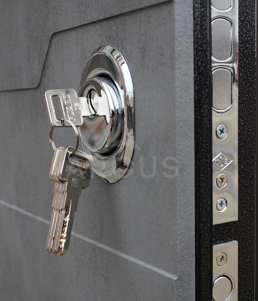 Входные двери в Тюмени: Входная дверь ДА-94 Никсон (два полотна)   Аргус в Двери в Тюмени, межкомнатные двери, входные двери