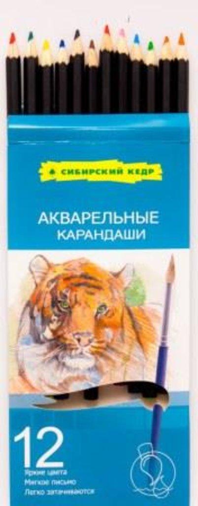 """Акварельные карандаши: Акварельные цветные карандаши """"Сибирский кедр"""" 12 цветов в Шедевр, художественный салон"""