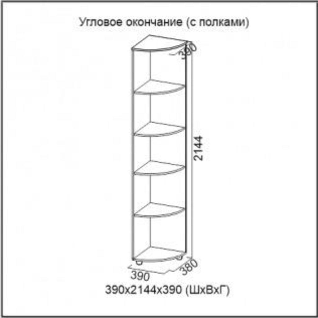 Мебель для прихожей Визит-1: Угловое окончание (с полками) Визит-1 в Диван Плюс