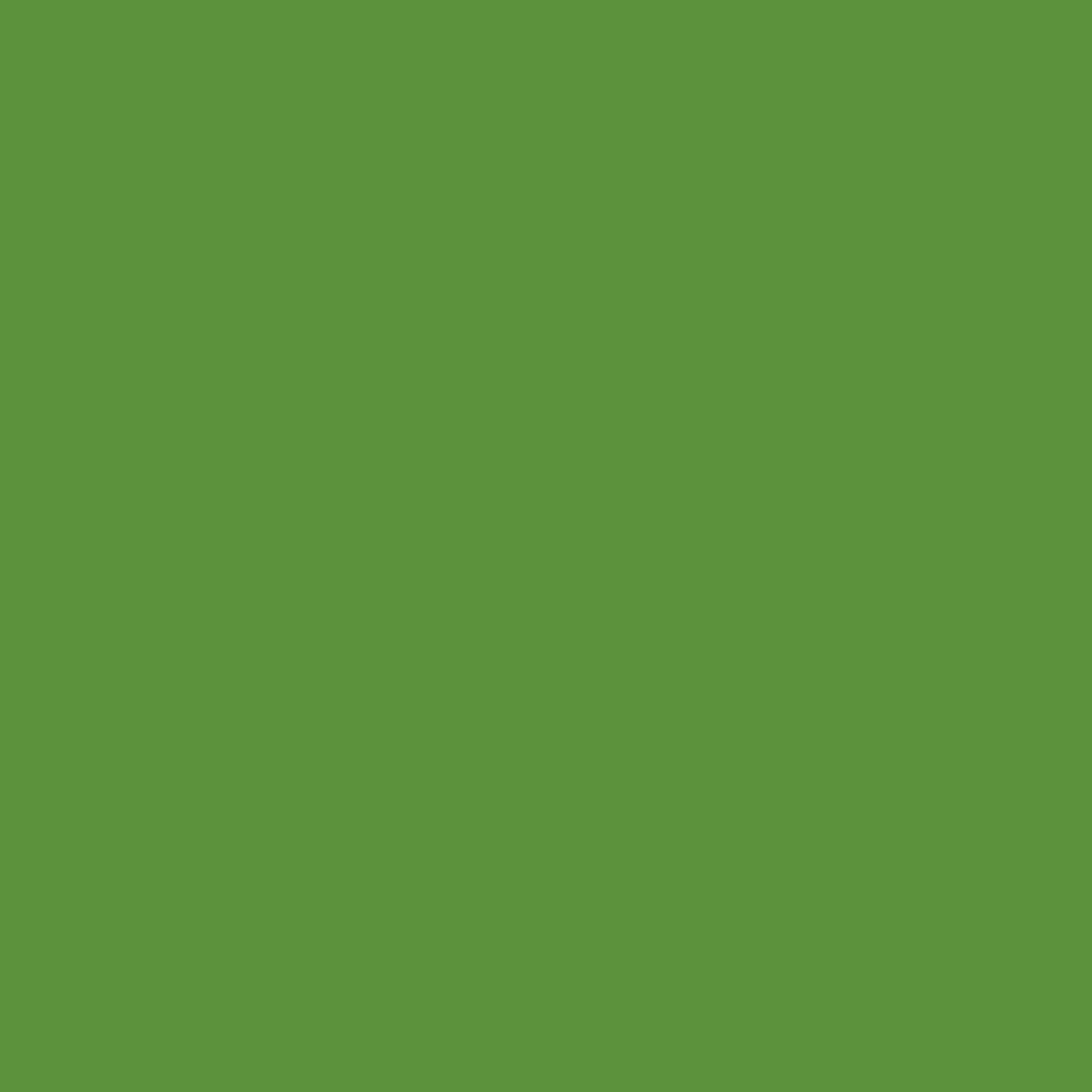 Бумага для пастели LANA: LANA Бумага для пастели,160г, 50х65,зеленый сок, 1л. в Шедевр, художественный салон