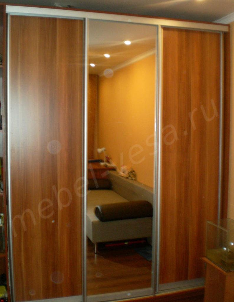 Шкафы: Шкаф-купе Олимп трехдверный с зеркалом в Vesa