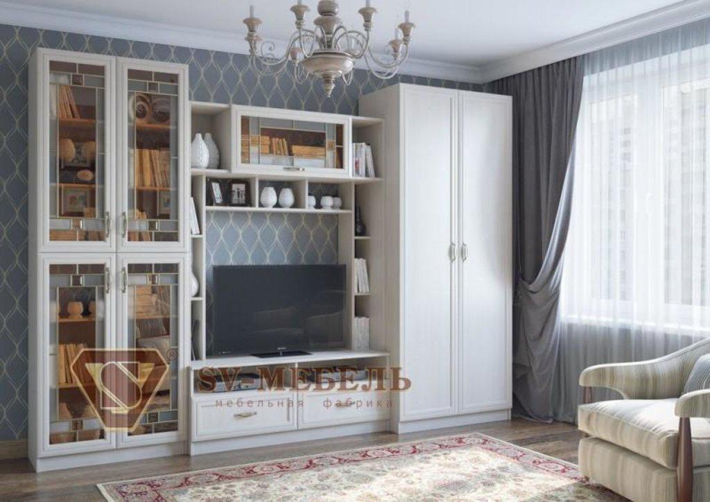 Мебель для гостиной Вега: Шкаф двухстворчатый ВМ-04 Вега в Диван Плюс