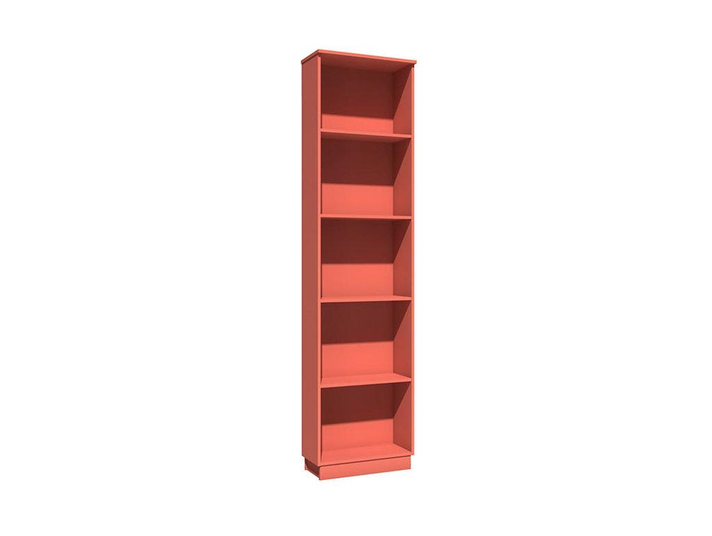 Детские шкафы и стеллажи: Стеллаж НМ 013.93-01 Рико в Стильная мебель