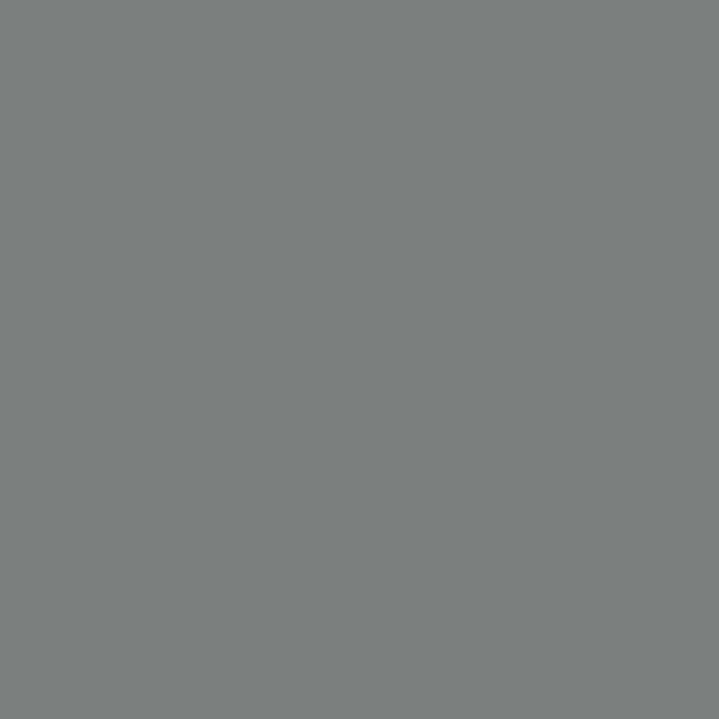 Бумага для пастели LANA: LANA Бумага для пастели,160г, 21х29,7, стальной серый, 1л. в Шедевр, художественный салон