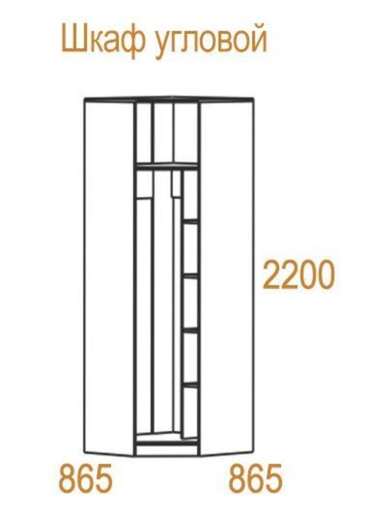 Шкафы для спальни: Шкаф угловой Николь в Стильная мебель