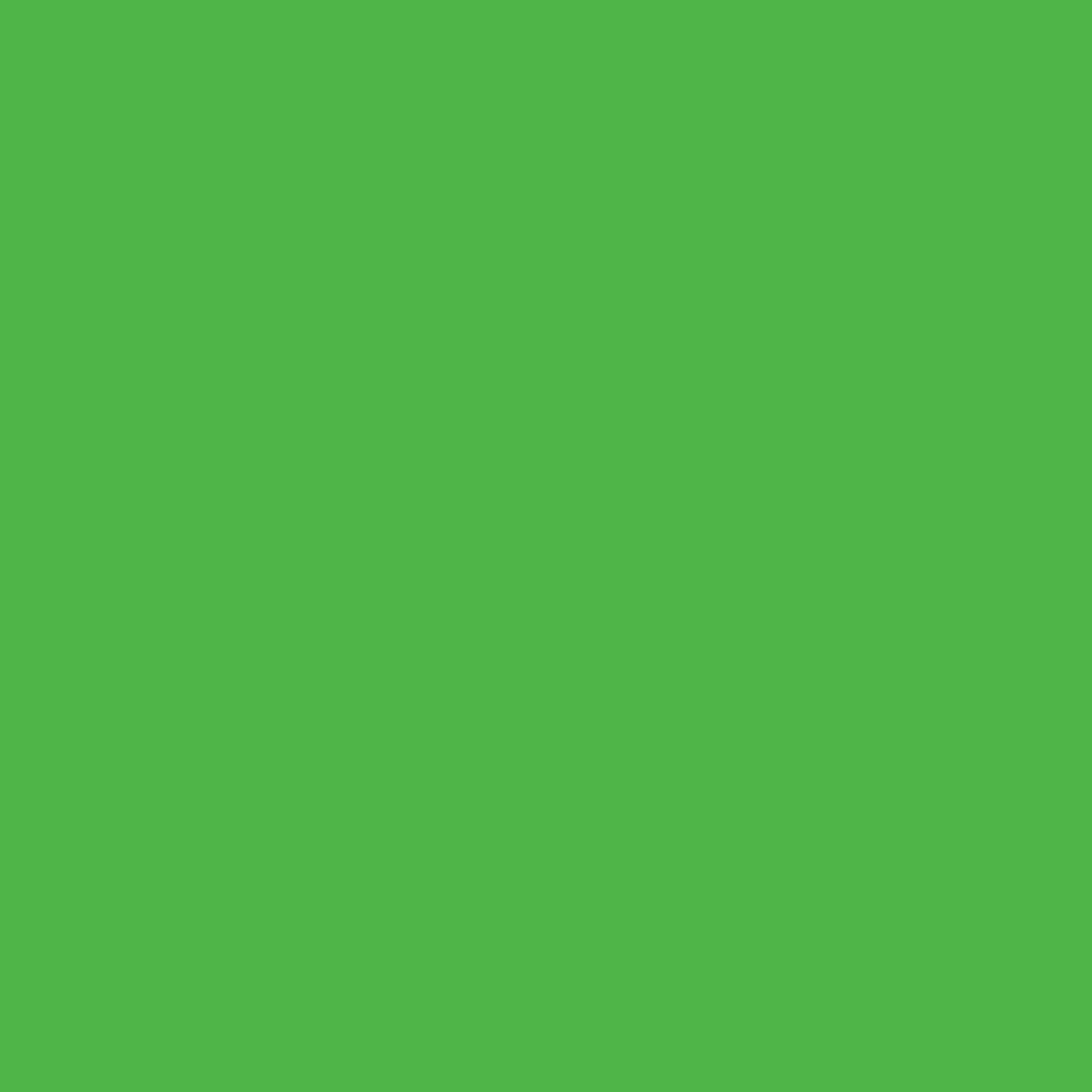 Бумага цветная 50*70см: FOLIA Цветная бумага, 130 гр/м2, 50х70см, зеленый травяной,  1 лист в Шедевр, художественный салон