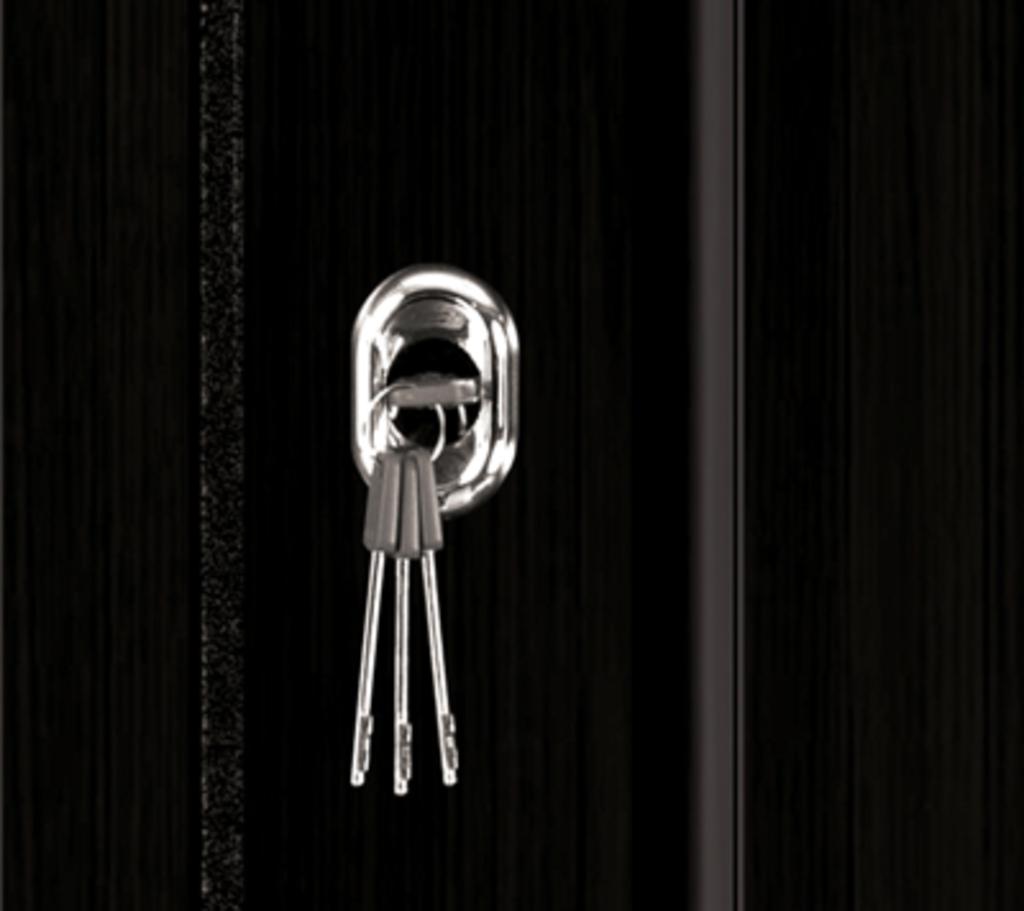 Входные двери: Входная дверь СЕНАТОР в STEKLOMASTER