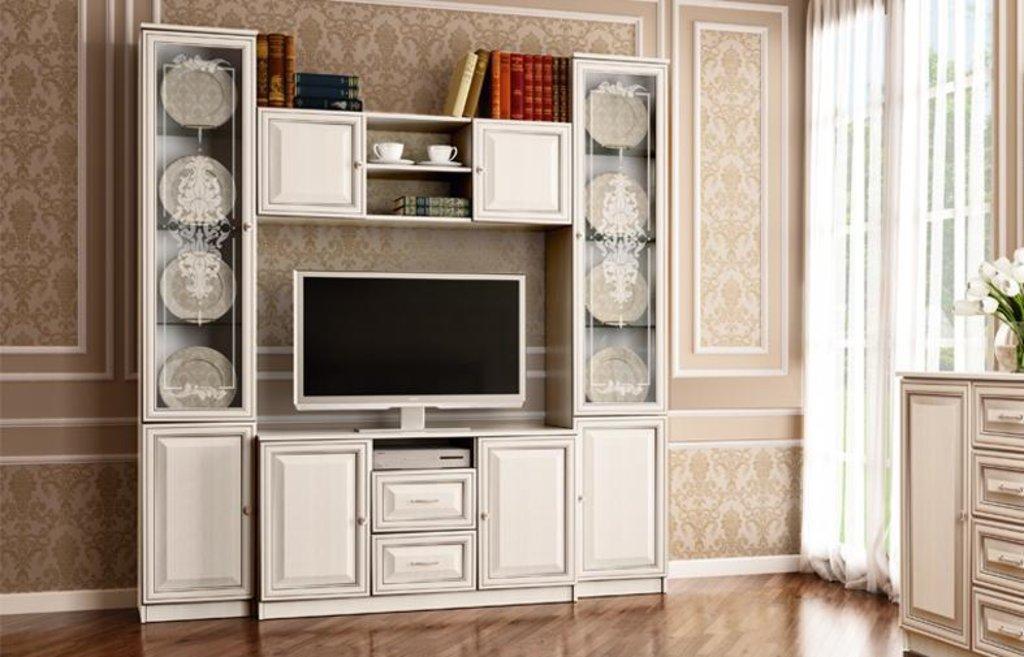 Набор мебели для гостиной Венера: Стенка 06.87 Габриэлла в Vesa