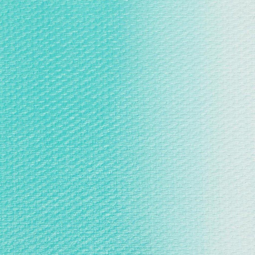 "МАСТЕР-КЛАСС: Краска масляная ""МАСТЕР-КЛАСС""  турецкая зелёная 46мл в Шедевр, художественный салон"