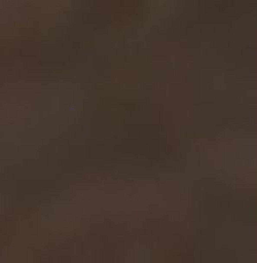 Бумага для пастели LANA: LANA Бумага для пастели,160г, 50х65,мокко, 1л. в Шедевр, художественный салон