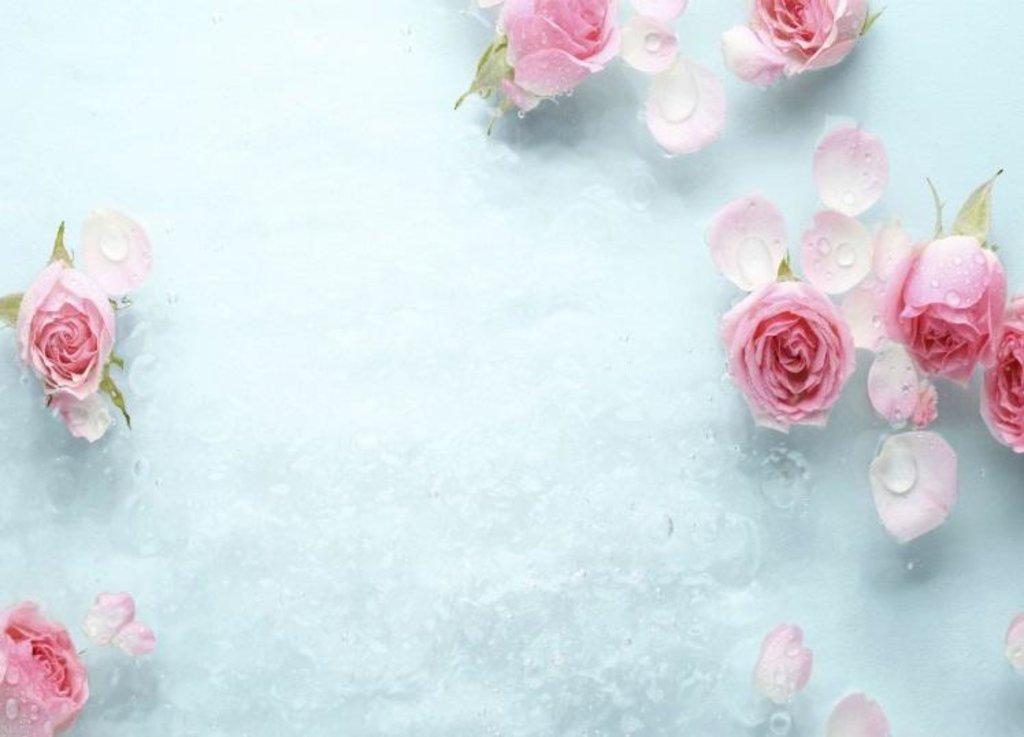 Панели Novita: Декоративный потолок Ледяная роза NOVITA в Мир Потолков