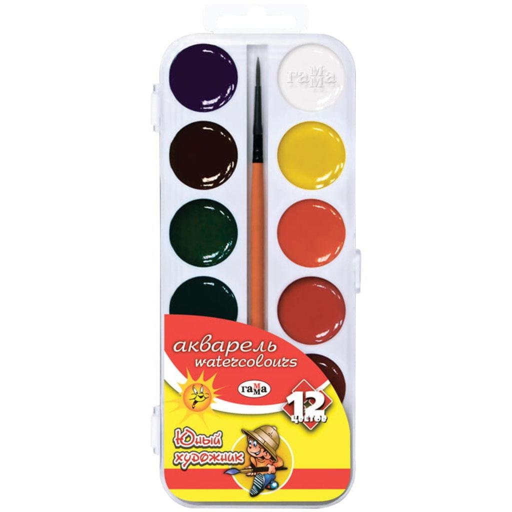 Краски: Акварель медовая  Юный художник  12цв без кисточки Гамма 212071 в Шедевр, художественный салон