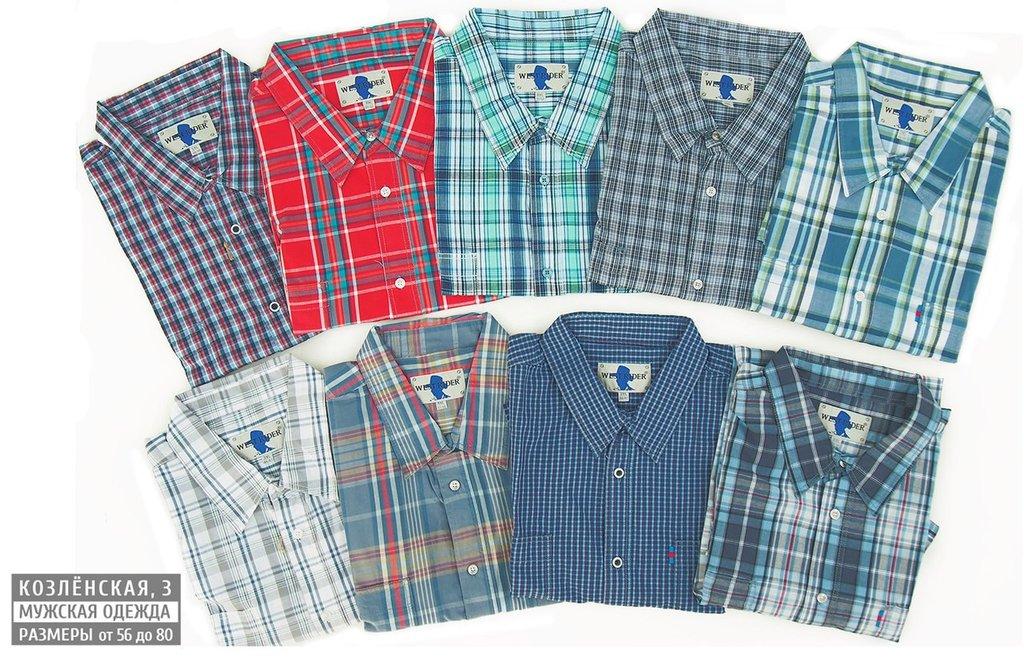 Рубашки, сорочки (короткий рукав): Рубашка с коротким рукавом в Богатырь, мужская одежда больших размеров