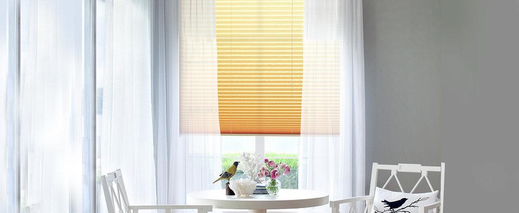 Шторы плиссе: Шторы плиссе с цепью управления на вертикальные окна (до 15°) в Салон штор, Виссон