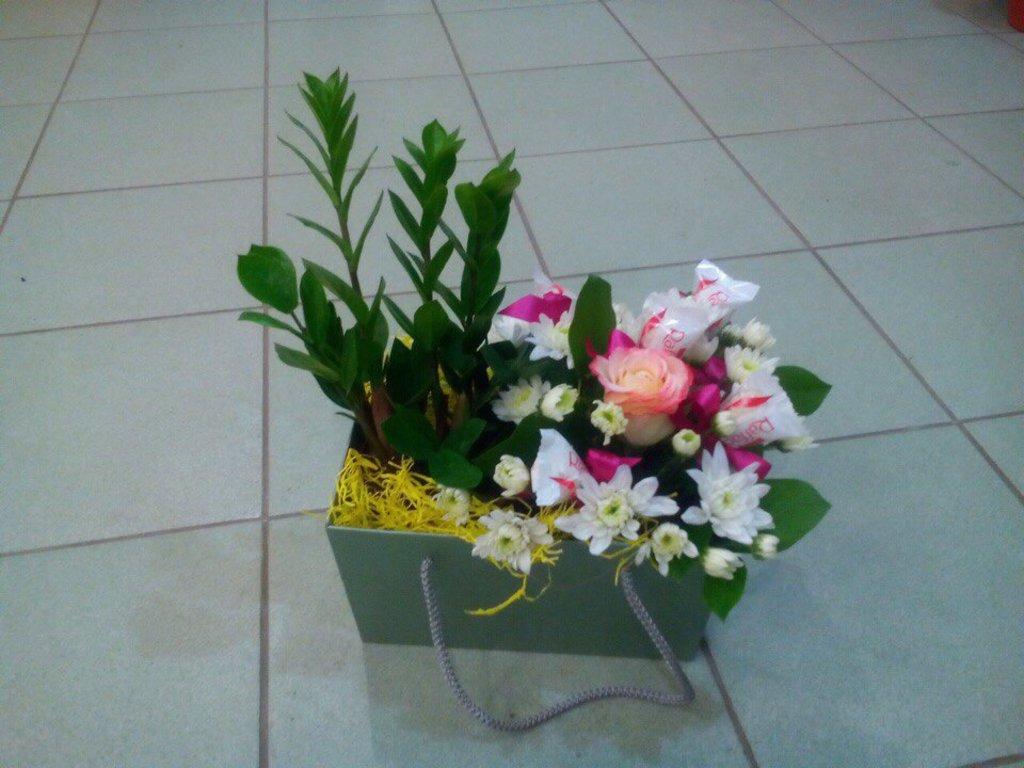 Композиции из живых цветов: Композиция с комнатным растением в Николь, магазины цветов