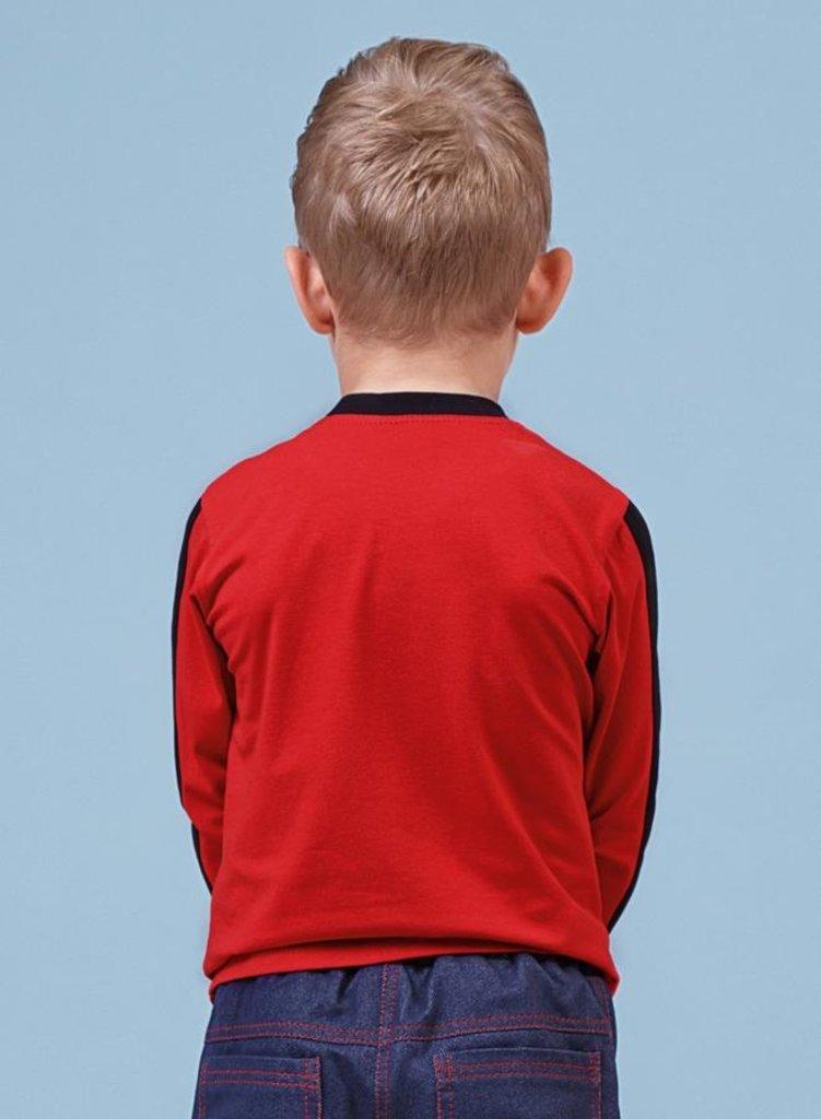 Одежда для мальчиков: Джемпер для мальчика 76-8013-4 в Детский универмаг