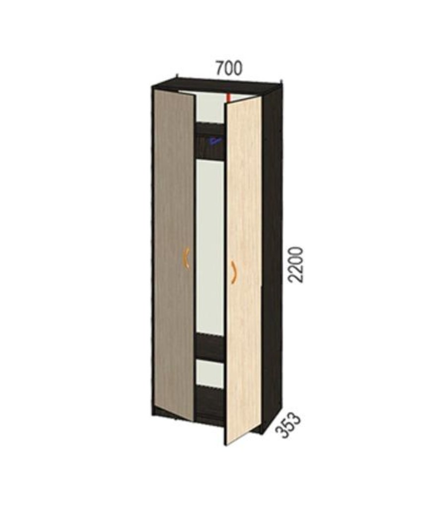 Мебель для прихожей Визит-5: Шкаф для одежды Визит-5 в Диван Плюс