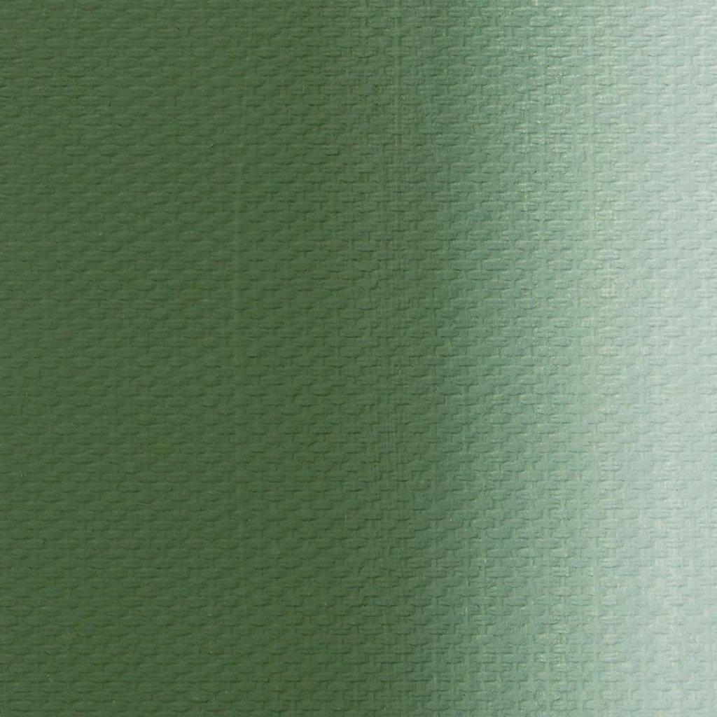 """МАСТЕР-КЛАСС: Краска масляная """"МАСТЕР-КЛАСС"""" окись хрома 46мл в Шедевр, художественный салон"""
