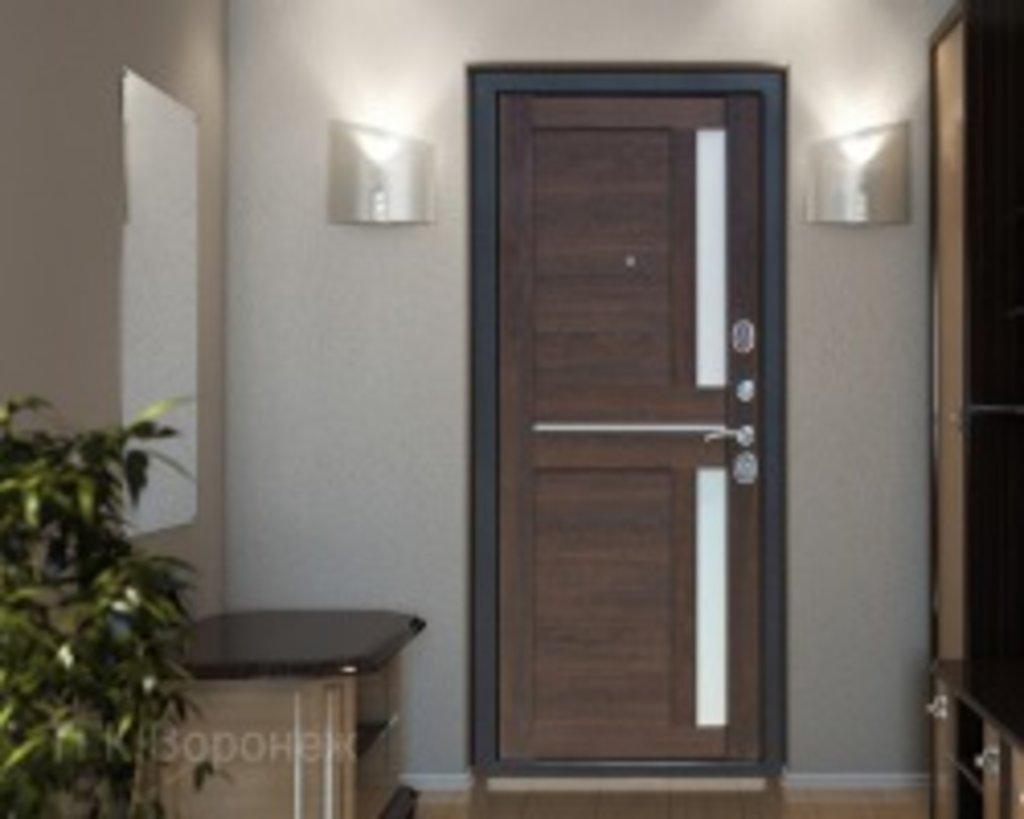 Входные двери (бюджет) от 70-80мм: Входная дверь  НЬЮ-ЙОРК Царга каштан в STEKLOMASTER
