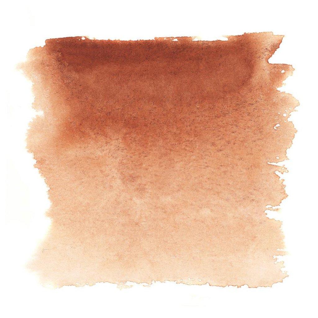 """Акварельные краски: Акварель """"Белые ночи"""" кювета сиена жженая 2,5мл в Шедевр, художественный салон"""